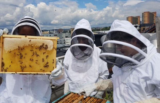 Young, urban beekeepers are creating a buzz