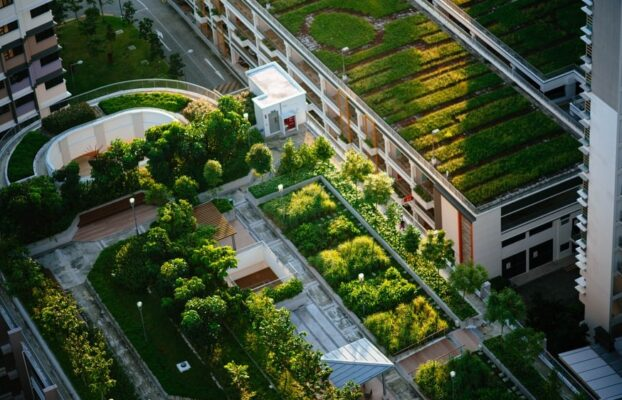 Barcelona assesses opportunities and barriers of green roofs in cities